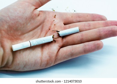 A symbol of quitting smoking. A broken cigarette laying in a white man's hand. On an isolated white background.