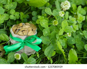 symbol of St. Patrick's Day, shamrocks, gold