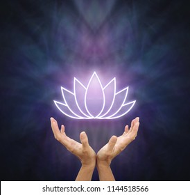 Symbolic Lotus healing Energy - female hands reaching up and open with a glowing white lotus flower symbol above against a dark blue and purple background with copy space