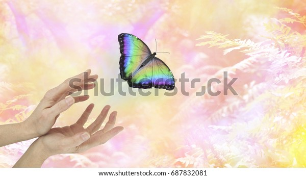 Symbolic Spiritual Release - female hands with a large  rainbow colored butterfly moving away and up on an ethereal pink orange yellow  woodland background  depicting a departing soul
