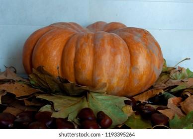 The symbols of autumn