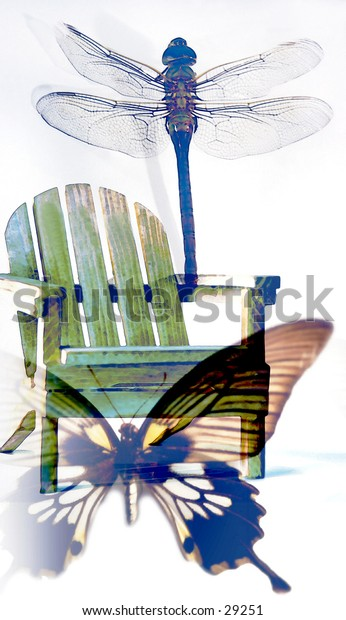 Symbols of Summer - Butterfly, Adirondack Chair & Dragonfly on White Background - White Wash Digital Glaze