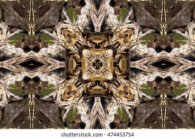 symmetric composition, kaleidoscopic, geometric composition, of wooden logs, simulating cathedral ceiling,