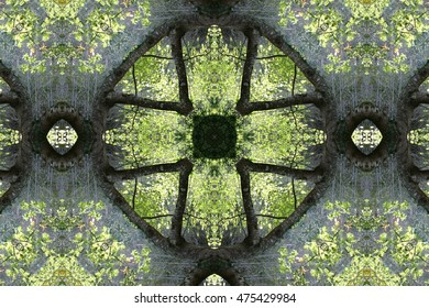 symmetrical composition, kaleidoscopic, mirror effect, geometric composition fantastic scenery, forest, idyllic plant allegory, mandala, abstract surreal photography, abstract naturalism,