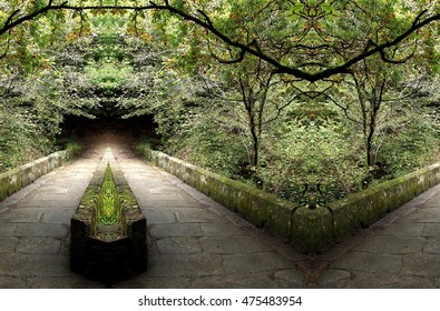 symmetrical composition, kaleidoscopic, mirror effect,geometric composition, in the enchanted forest road, idyllic plant allegory, mandala, abstract surreal photography, as fragas of Eume,