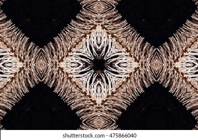symmetrical composition, kaleidoscopic, mirror effect,geometric composition, of Skeleton Tajisnaste red,Echium wildpretii,  is an endemic plant, of Teide National Park.when he dies becomes a skeleton,