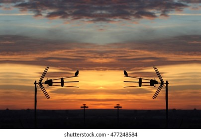 symmetrical composition, kaleidoscopic, mirror effect,geometric composition of landscapes, Dawn in Toledo, Spain, with blackbirds, blackbirds on tv antenna, silhouettes of blackbirds,