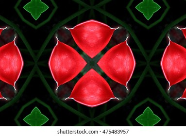 symmetrical composition, kaleidoscopic, mirror effect,red calla flower, Flower calla, spring, background, flowers, flower, nature, floral, garden, summer, beautiful, landscape, pink, blossom,