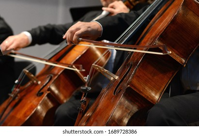 Symphony orchestra on stage, hands playing cello. Professional cello player's hands close up, he is performing with string section of the symphony orchestra