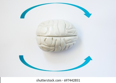 Symptom of Vertigo or head is spinning photo concept. Shape of human brain lies surrounded by arrows that indicate direction of Vertigo. Symptom and sensation of many diseases of brain and inner ear