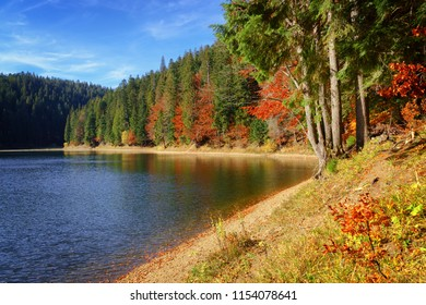 Synevir high altitude lake at autumn day the leaf fall.