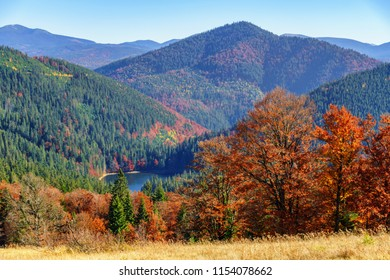 Synevir high altitude lake and forested mountains at autumn day top view.