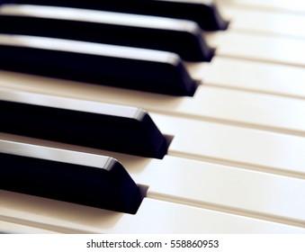 Synth keys black white .Piano.