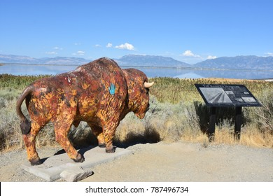 SYRACUSE, UT - AUG 25: Painted bison from the 2002 Olympics at Antelope Island State Park in Syracuse, Utah, as seen on Aug 25, 2017.