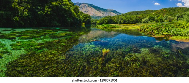 Syri i Kaltër - Blue Eye - geological phenomenon where a stream of fresh, cold water flow to the surface from under ground. Amazing green vegetation around. Albania, Saranda area.