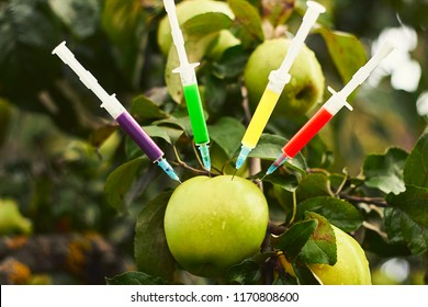 Syringes with chemical fertilizers of different colours in apple. GMO and pesticide fruits.