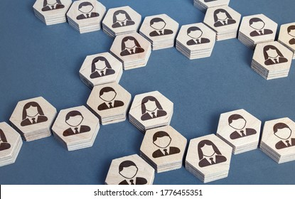 System structure of company employees as chains of hexagons. Development and teambuilding. Organization of business, distribution of responsibilities, well coordinated teamwork. Recruiting and hiring.