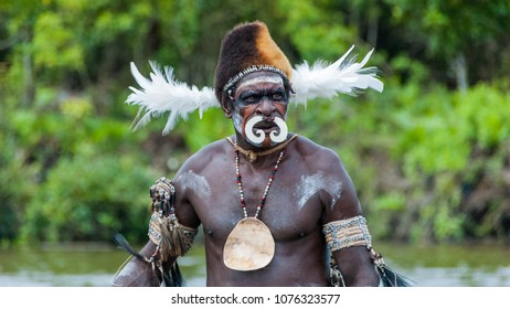 Syuru, Asmat Region/ Indonesia - November 9 2012: A chief wears bilas, body ornamentation, appropriate to his station. A pig's tusk nose ornament, and a fur hat decorated with feathers and shells