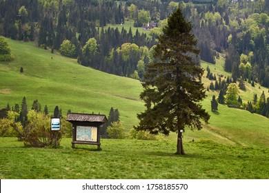 Szlak turystyczny ciągnący się przez wzgórza w Parku Narodowym. Tablica informacyjna, samotne drzewo, ścieżka i jasne światło słoneczne. - Shutterstock ID 1758185570