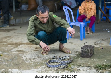 TA PHIN, LAO CAI, VIETNAM - SEP 21, 2014:  Unidentified Red Dao man plays with a snake in the Ta Phin village. Red Dao is one of the minority ethnic groups in Vietnam