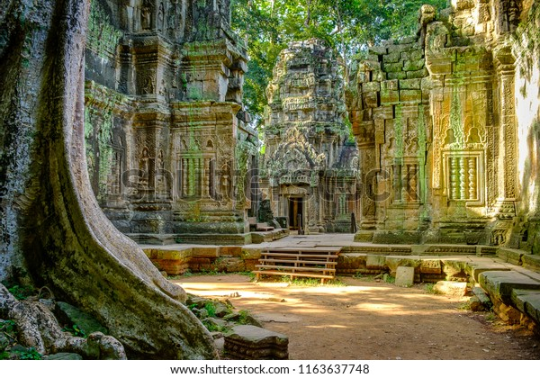 Ta Prohm temple in the morning light. Part of the Angkor Wat complex, Seam Reap, Cambodia. Film location for Tomb Raider.