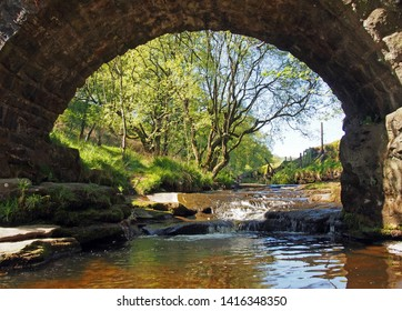 ta view under the old packhorse bridge at lumb hole falls in woodland at crimsworth dean near pecket well in calderdale west yorkshire