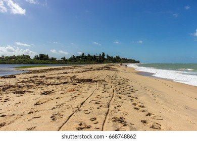 Tabatinga beach, where the sea meets the river, Paraíba, Brazil