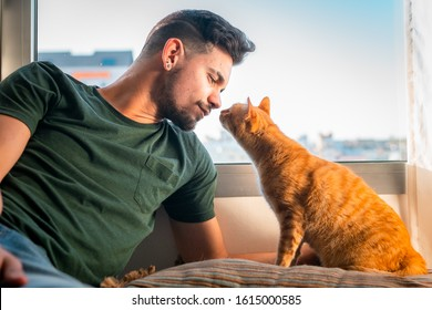 Tabby cat brings its snout to the nose of a young man in front of the window. Home scene