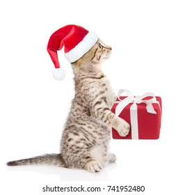 tabby cat in red christmas hat with gift box. isolated on white background