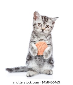 Tabby kitten holding ball of yarn.  Isolated on white background