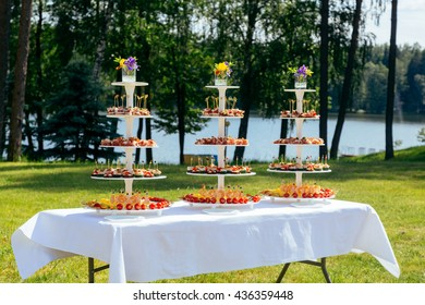 The table with appetizers and snacks for a birthday or wedding event