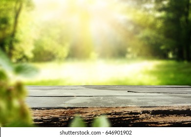 Table background of free space and background of green garden of summer or spring time