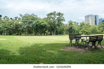 Table and chair in the park On green grass On a bright sky