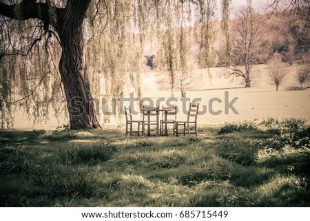 Table And Chairs Beneath A Willow Tree