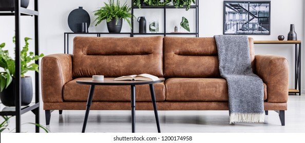 Table in front of leather couch with blanket in white flat interior with poster and plants. Real photo