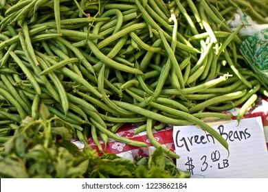Madison Wisconsin Farmers Market Images, Stock Photos & Vectors