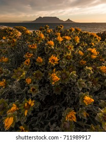 Table Mountain beach sunset