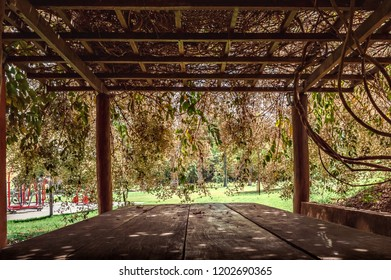 Table for picnic under a wood pergola in a park