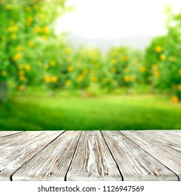 Table space of wood and summer background