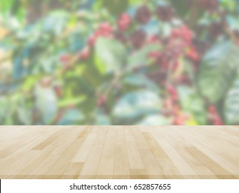 Table Top And Blur coffee plantation Of The Background