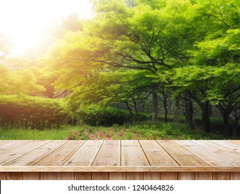 Table top and blur nature of the background, Green grass and trees beauty nature background.