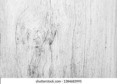Table top view of birch wood texture in white pale color background. Grey clean grain rough oak wooden floor birch panel backdrop with counter board detail streak finishing for clear concept.
