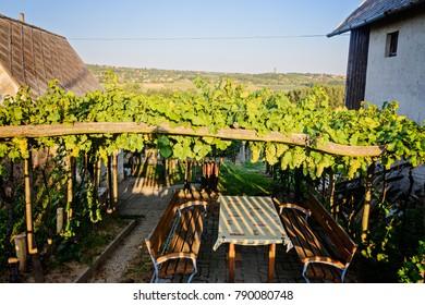 table at the vineyard  in  Balaton wine region, Hungary