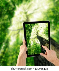 tablet computer in hand on the forest backgrounds.