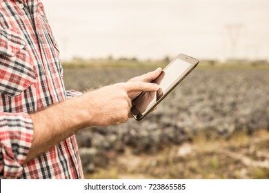 Tablet in farmer's hands in front of cabbage field. Modern technology in agriculture - concept. Country outdoor scenery.