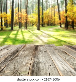 tabletop and autumn