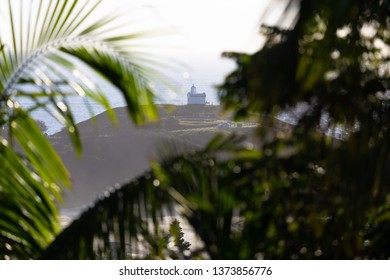 Tacking Point lighthouse framed with tropical palm trees against a calm morning ocean in Port Macquarie, Australia