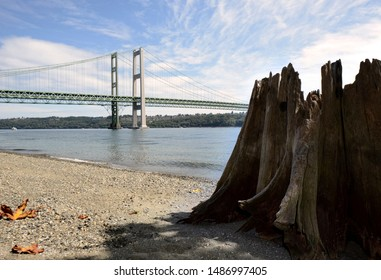 Tacoma, WA / USA - Aug. 24, 2019: Tacoma Narrows Bridge