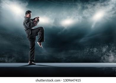 taekwondo action poses in stadium background.