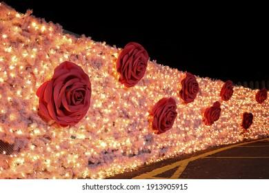 Taichung City, Taiwan - Feb 6th,2021 :red rose on Pink Led light wall at lantern festival of Dongfong bike trail at Shigang Dist